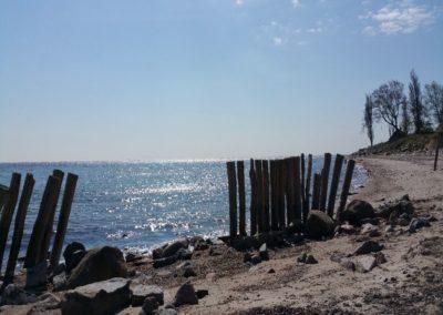 Seil hinab oder hoch hinaus: Steilküste in Dahme